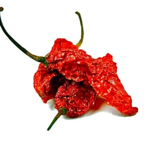 chile-ghost-pepper-