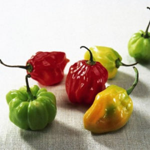 caribbean-scotch-bonnet-peppers-300x300
